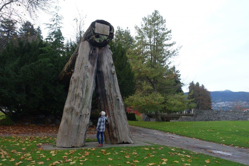Amidst the trunks in Stanley Park