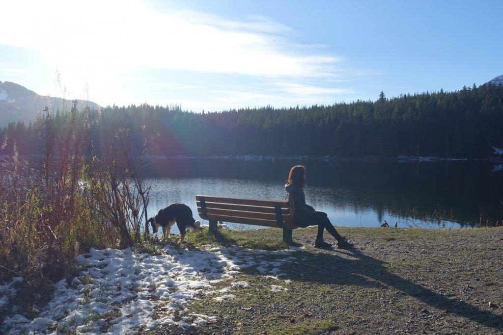 Bench by the Lost Lake, Whistler when you go trekking in Autumn – Winter