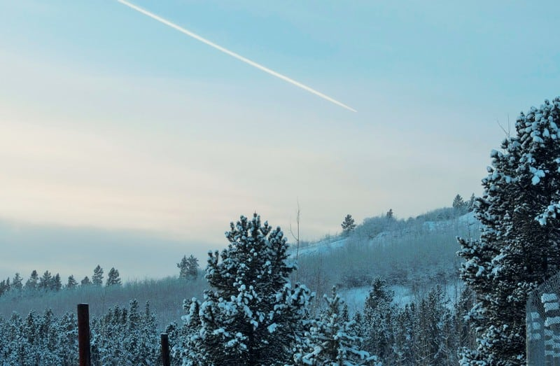 Winter Wildlife in Whitehorse - Beautiful scenery and sky in the surroundings of the yukon wildlife reserve