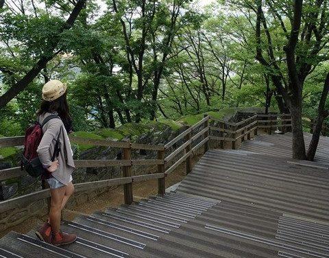 Walking through namsan park - Mode of Transport foot